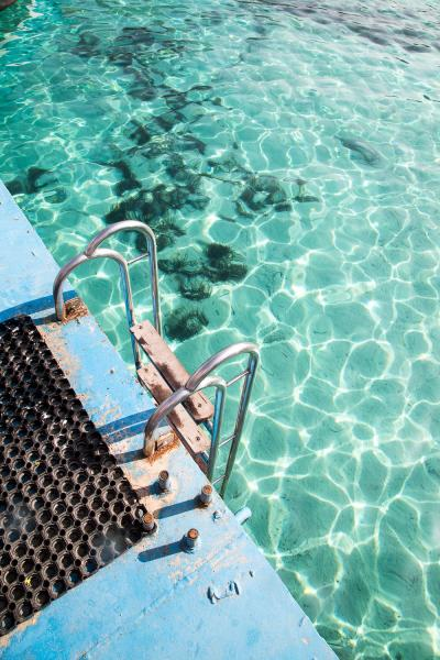 Print art: The Blue Lagoon