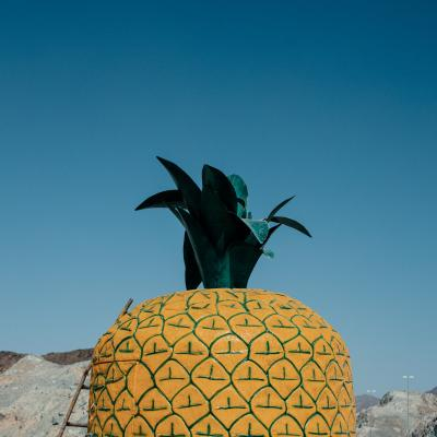 Print art: PINEAPPLE SKY