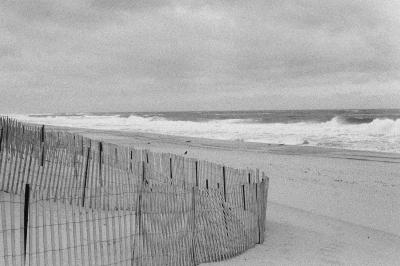 Print art: Montauk Series #4