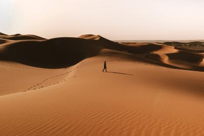 Print art: Golden hour walk through the Sahara Desert